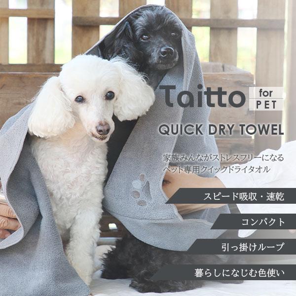 taitto_qdt1